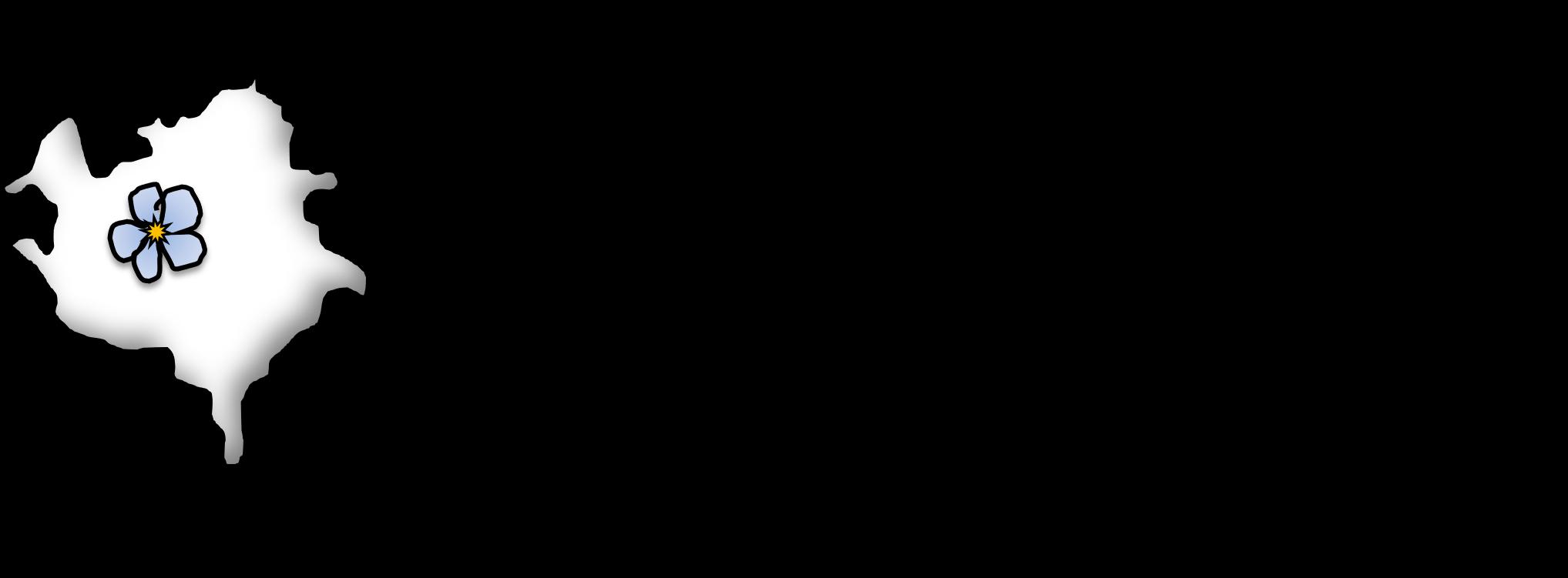 LOGO Netzwerk Demenz_schwarz.jpg